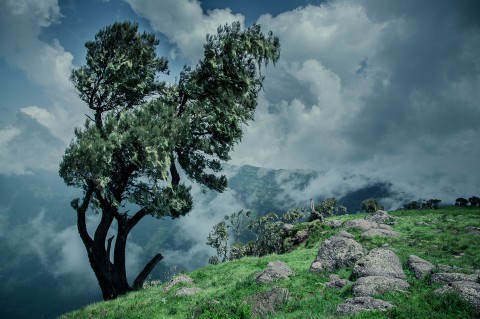 Día de niebla en las montañas Simien