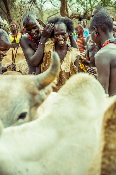 Cortan pelo al varón , tribu Hammer, ceremonia Bull Jumping en Etiopía