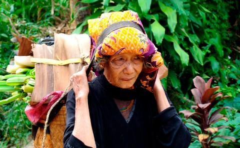 Mujer cargando hojas en tana toraja, sulawesi, Etiopía