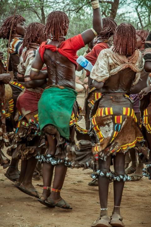 Mujeres bailan , tribu Hammer, ceremonia Bull Jumping en Etiopía
